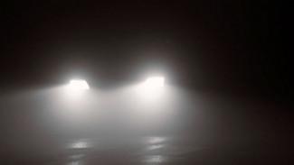 Под Воронежем водитель фуры насмерть сбил в темноте пешехода