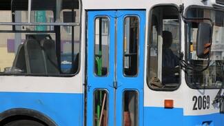 В Воронеже на два дня остановятся троллейбусы двух маршрутов