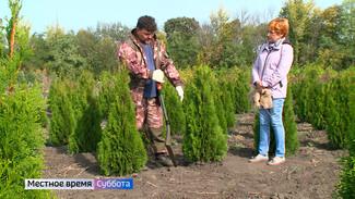 Воронежский агроном рассказал, как правильно рассадить декоративные растения