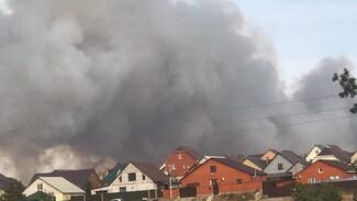 В очередном районе Воронежской области лесной пожар подобрался к посёлку