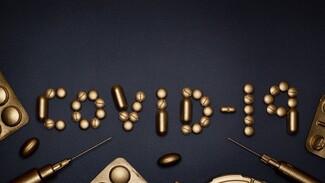 Россиян предупредили о приближении пика заболеваемости COVID
