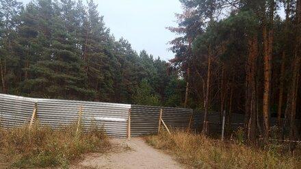 Воронежцы выступили против установки забора и вырубки деревьев в парке «Северный лес»