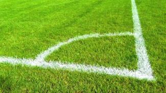 У воронежского стадиона «Чайка» появится новая тренировочная площадка