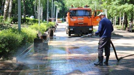 В Воронеже отмыли затопленный при ливнях Центральный парк