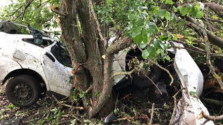 Водитель и пассажир «Лады» погибли в страшной аварии под Воронежем