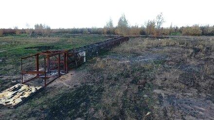 Спиливший 17-тонную вышку житель Воронежской области ответит в суде за поджог 100 га леса