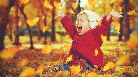 Метеорологи спрогнозировали потепление в Воронежской области в первые дни октября