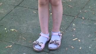 В воронежском детсаду из-за нашествия блох вскроют полы