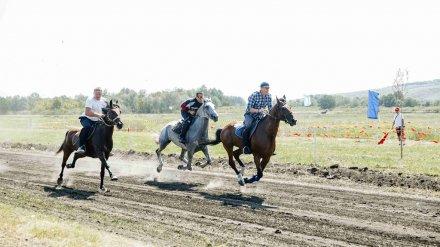 Под Нововоронежем прошли захватывающие скачки на лошадях