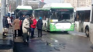 Воронежцы сообщили о новом ДТП с автобусами на Левом берегу