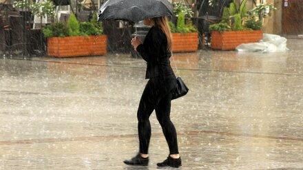 Новая рабочая неделя в Воронеже будет дождливой и ветреной