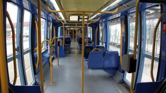 Полное обновление пассажирского транспорта в Воронеже потребует 3 млрд рублей