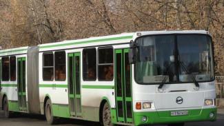 Автобусы-гармошки снова появятся в Воронеже с 26 марта