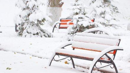 Метеорологи назвали самый заснеженный город в Воронежской области