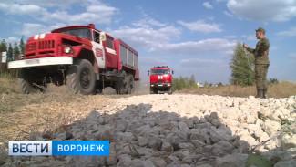 МЧС: пожар в районе полигона «Погоново» охватил около 100 гектаров
