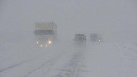 Стало известно число жертв ДТП с автобусом с 26 пассажирами на воронежской трассе