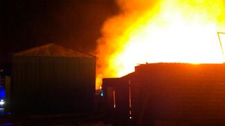 Мощный пожар в воронежском микрорайоне сняли на видео