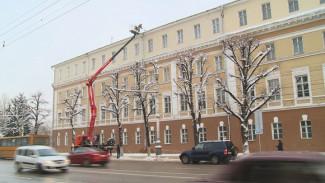 Воронежские коммунальщики бросили все силы на войну с сосульками