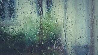Выходные в Воронежской области будут дождливыми и ветреными