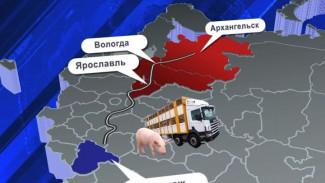 Фермера из Воронежской области обвиняют в распространении АЧС в нескольких регионах
