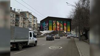 Мэр одобрил идею создания в Воронеже фестиваля паблик-арта
