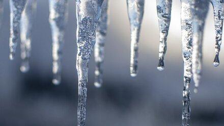 Последняя неделя февраля принесёт в Воронежскую область весеннее тепло