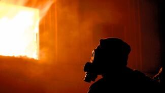 На пожарах в Воронеже за месяц погибли 7 человек