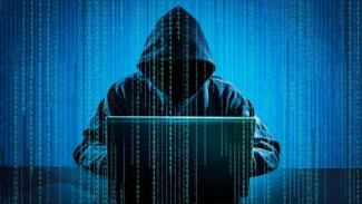 В Воронежской области отразили все хакерские атаки на правительство