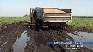 Сельчане Воронежской области мечтают о засухе