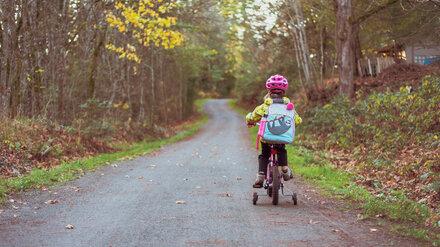 В Воронежской области 11-летняя девочка на велосипеде попала под колёса легковушки