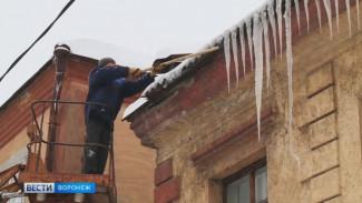 Воронежцы получают «зимние» травмы» – что делать, если это случится с вами