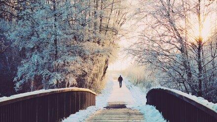 Синоптики сообщили, будет ли снег на Новый год в Воронежской области