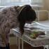 Воронежцы смогут в 2021 году в МФЦ получить свидетельство о рождении ребёнка