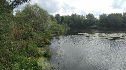 В Воронеже цвет воды в скандально известном озере Круглое стал сине-зелёным