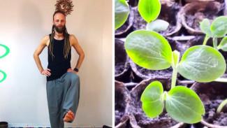 Прокачай себя. Мини-огород на подоконнике и йога для укрепления суставов