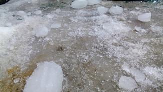 В Воронежской области лёд с крыши рухнул ещё на трёх человек