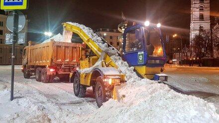С воронежских улиц за ночь вывезли рекордный объём снега
