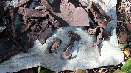 В Воронежской нагорной дубраве нашли обломки советского истребителя