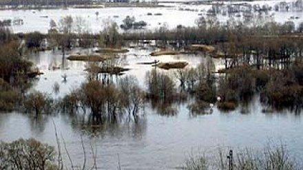 В южных районах Воронежской области начал отступать паводок