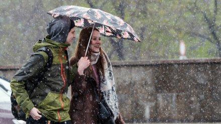 Синоптики спрогнозировали дождь с мокрым снегом в Воронежской области
