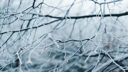 МЧС предупредило воронежцев об аномальном холоде