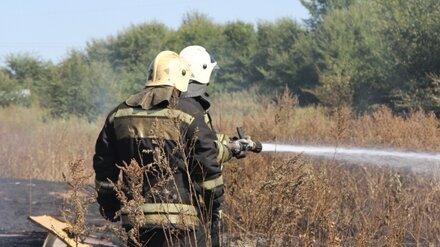 Спасатели предупредили о запахе гари в воронежском микрорайоне