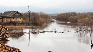 В Воронежской области поторопятся привить от ковида жителей утопающих сёл
