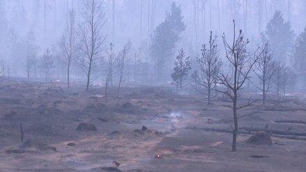 В Воронежской области ликвидировали два крупных пожара