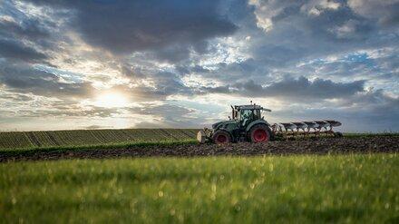 Раздавивший человека в Воронежской области тракторист избежал колонии