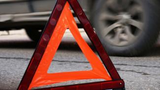 Полиция установила личности погибших в ДТП с микроавтобусом на воронежской трассе