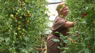 В Воронежской области появился первый кооператив производителей органической еды