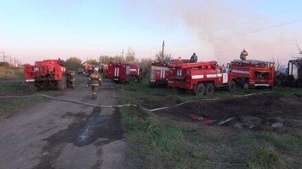 Вспыхнувшая сухая трава и ветер привели к крупному пожару в воронежском селе