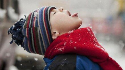 Из-за антициклона из Скандинавии воронежцам придётся дольше ждать снега