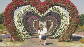 Воронежский фестиваль «Город-сад» запланировали провести вопреки третьей волне ковида